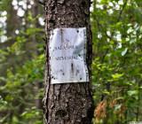 Это единственный указатель на пути к лагерю