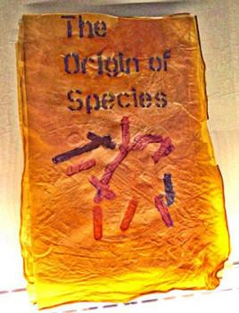 Книга Дарвина из бактерий