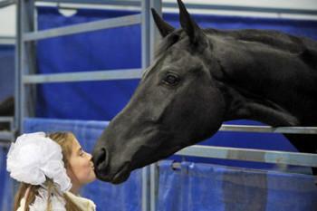 Во Франции животных признали живыми существами