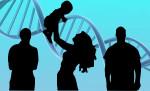 Ребенок с тремя родителями