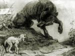 Волк и Ягнёнок. С рисунка А. Лаптева