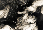 Фрагмент места казни в лесу